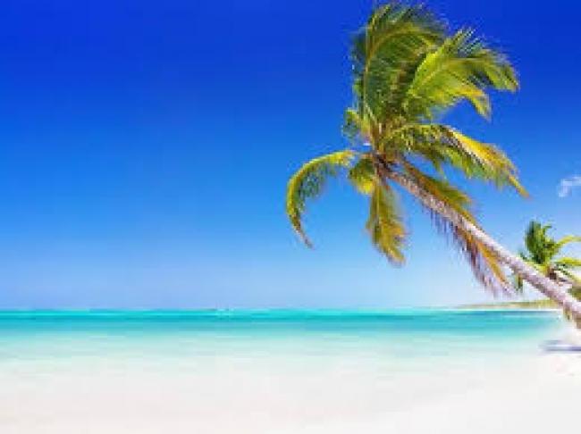 Punta Cana Verano 2020 - Salidas 09 y 23 de Enero, 14 de Febrero y 13 de Marzo